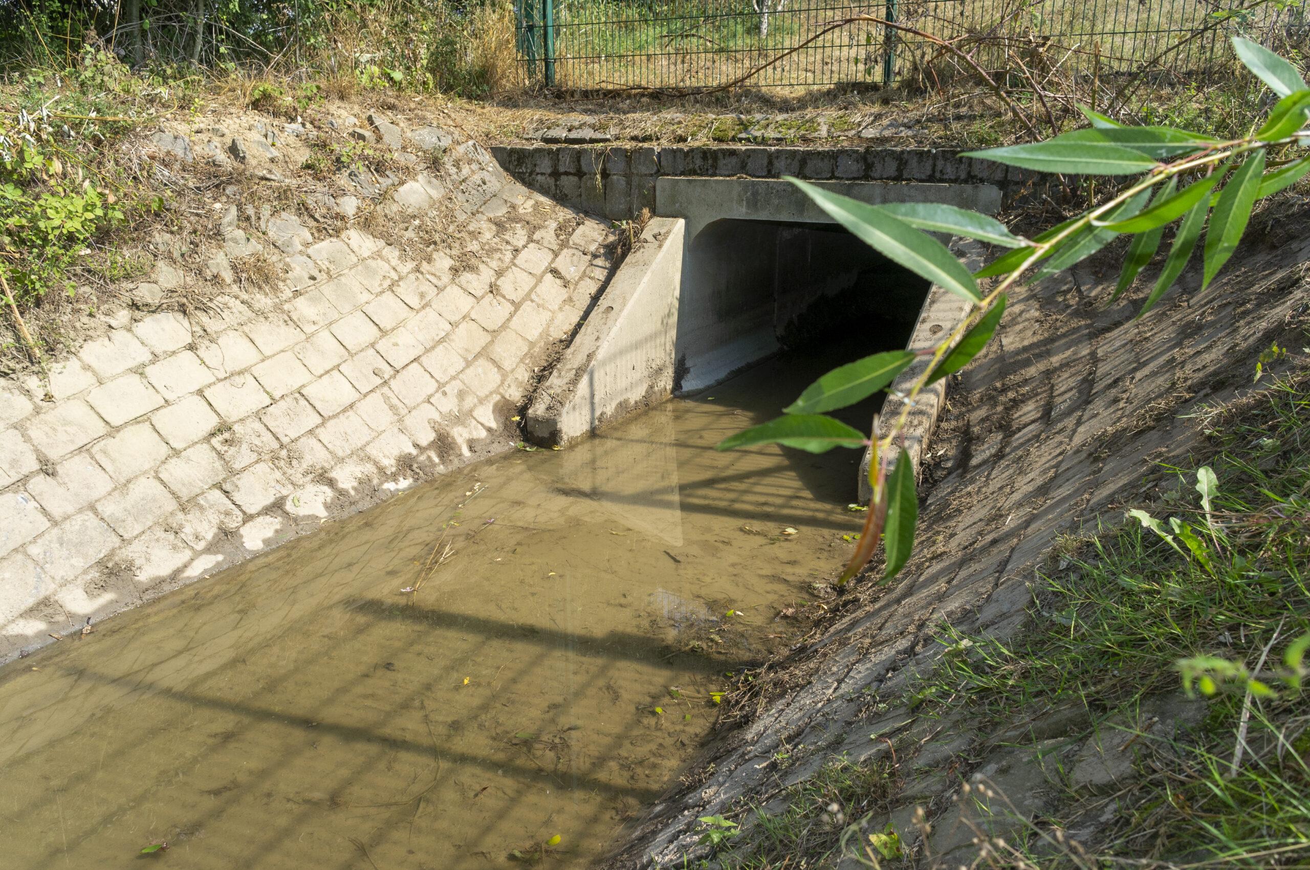 Reinigung Regenrückhaltebecken, Entfernung von Sedimenten