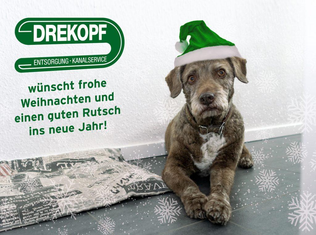 Weihnachtsgrüße mit Bürohund Tiero